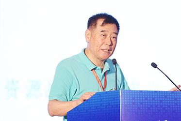 中国地质科学院全球矿产资源战略研究中心首席科学家王安建